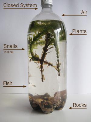 how to create a biome