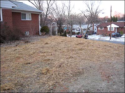 Yard After Trenching